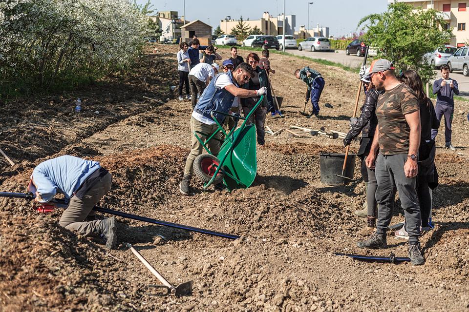 Cercasi giardiniere a Matera 2019 per Mammamiaaa